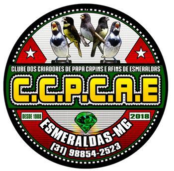 CCPCAE