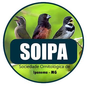 Soipa