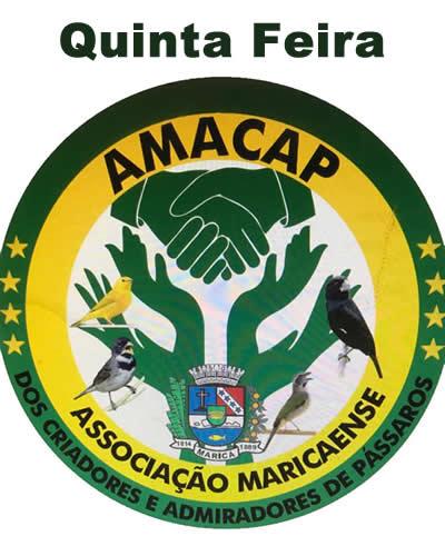 AMACAP - QUINTA FEIRA