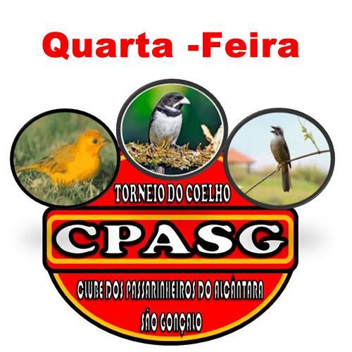 Torneio do Coelho - 4F
