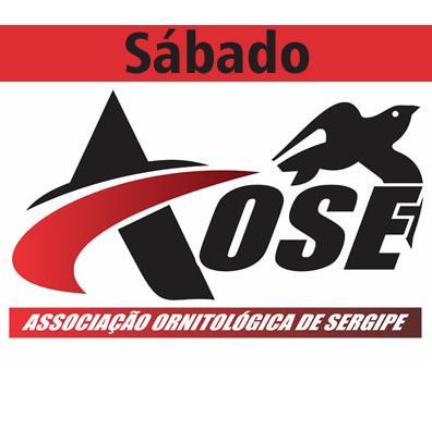 AOSE - Sábado