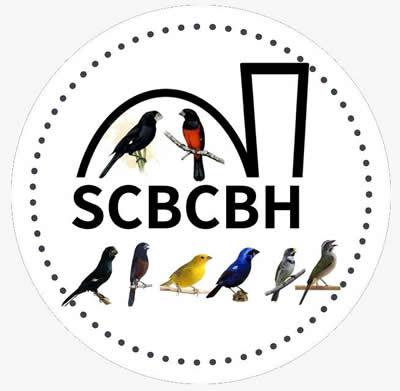 SCBCBH