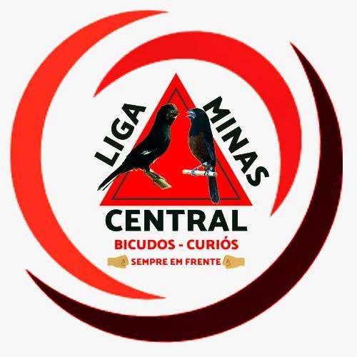 Liga Minas - Central